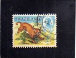 SWAZILAND 1969 FAUNA ANIMALS CARACAL AFRICAN LINX WILDLIFE WILD ANIMAL 1/2c  CENT. 1/2  LINCE ANIMALE SELVATICO USED - Swaziland (1968-...)