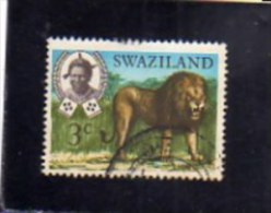 SWAZILAND 1969 FAUNA ANIMALS LION WILDLIFE WILD ANIMAL 3c  CENT. 3 LEONE ANIMALE SELVATICO USED - Swaziland (1968-...)