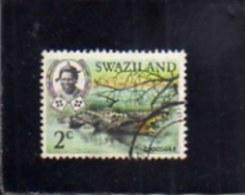 SWAZILAND 1969 FAUNA ANIMALS CROCODILE WILDLIFE WILD ANIMAL 2c  CENT. 2 COCCODRILLO ANIMALE SELVATICO USED - Swaziland (1968-...)