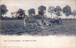 La Vie Des Champs - Un Moment De Repos - Charrue Labour Boeuf - 2 SCANS - Cultures
