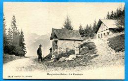AVR152, Morgins-les-Bains, La Frontière, Douane Franco-Suisse, Animée, 4118, Non Circulée - VS Valais