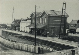 Buggenhout : Station  ( Groot Formaat ) - Buggenhout