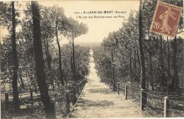 ST-JEAN-DE-MONTS - L´allée Des Soupirs Dans Les Pins    65 - Saint Jean De Monts