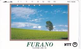 Japan, 431-023 B, Furano, 2 Scans. - Japan
