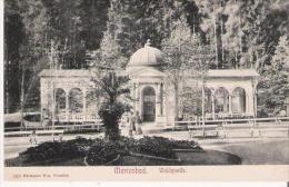 MARIENBAD (MARIANSKE LAZNE) 318 WALDQUELLE - Tchéquie