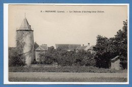 45 - BOESSES -- Le Chateau D'Aulnay... - Sonstige Gemeinden