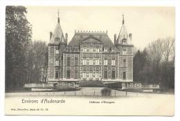 CPA - Environs D'Audenarde - Château D' ELSEGEM - Kasteel  // - Wortegem-Petegem
