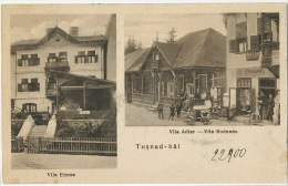 Tusnad Bai Vila Emma Vila Adler Vila Rodeanu - Roumanie