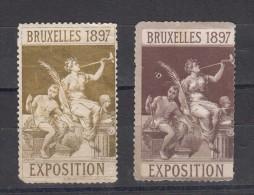 Belgique Vignette Exposition De Bruxelles 1897 2 Différentes - Commemorative Labels