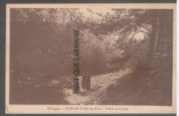 29 - SABLES D'OR --Défillé Sous Bois--animé--cpsm Pf - France