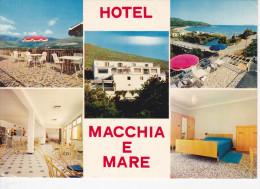 BASTIA (20-2B Haute Corse), Cap Corse H�tel Macchia E Mare, Damiani-Pietracorbara, Ed. La Cigogne