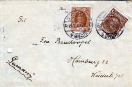 R.C.R. 1928, 2 Fach Frankierung Auf Brief - Briefmarken