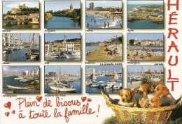 34. CPM. Hérault. Béziers, Agde, Mèze, Sète, Balaruc, Carnon, Bourigues, Palavas, Valras, Etc.. Et Petits Chiots (12vues - France
