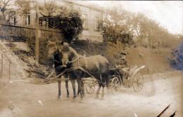Offizier? In Pferdekutsche, Soldat (?) Kutscher In Uniform, Orig.Fotokarte 1915?, Altersbedingte Gebrauchsspuren - Personen