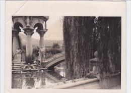 Italy - Imperia - Villa Grock - Photo - 120x95mm - Plaatsen