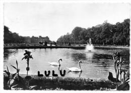 DEPT 54 , GF 2 Scans ; Luneville Le Parc Du Chateau - Luneville