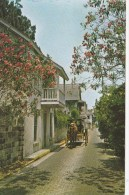 CPM St. Augustine, La Plus Ancienne Ville Des USA - Calèche - St Augustine
