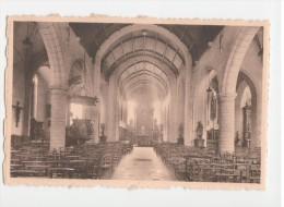ZWIJNDRECHT - Binnenzicht Der Kerk  - Uitg. Van Rompaey - Zwijndrecht