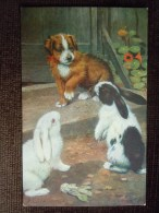 """Lot De 19 Cartes Postales Raphael Tuck & Sons """" OILETTE """" , Fantaisie , Aquarelle , Toutes Scannées - Cartes Postales"""