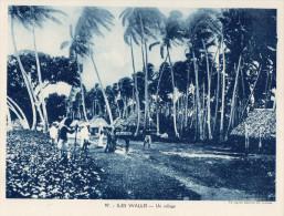 Format 24x18 ; Iles Wallis , Un Village - Wallis Y Futuna