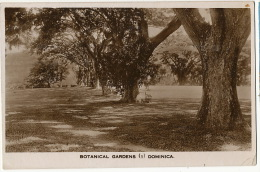Dominica W. I.  Botanical Garden Editor Written 1937 From Roseau  No Stamp - Dominique