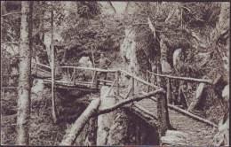 ROMANIA  -  KARPATHEN -  Edit Fos. Drotleff. - Hermannstadt - 1917 - Roumanie