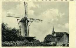 LOOSDUINEN - 's-Gravenhage (Zuid-Holland) - Molen/moulin - Prachtige Kaart Van Stellingmolen 'De Korenaer' (1936) - Den Haag ('s-Gravenhage)