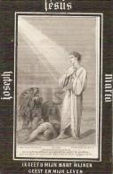 DP. ANNA VAN NOOTEN - ° LIPS (LIER) 1810- + HERENTHOUT 1871 - Religion & Esotericism