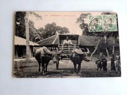 Carte Postale Ancienne : CAMBODGE : Buffles Attelés, Timbres, En 1913 - Cambodia