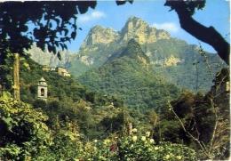 Cardoso - Il Monte Forato - 46223 - Formato Grande Viaggiata - Pistoia