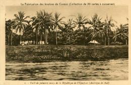EQUATEUR(FABRICATION DE BOUTONS DE COROZO) - Equateur