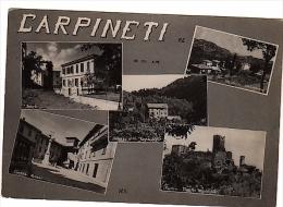 VR231 CARTOLINA REGGIO EMILIA SALUTI DA CARPINETI VEDUTE VEDUTINE - Reggio Emilia