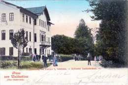 Gruss Vom Waldschloss (Ober-Österreich), Idyllischer Landaufenthalt, Karte Gel.1901?, Stempel Haibach Bei Schärding ,,, - Unclassified