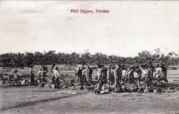 TRINIDAD - Pich Diggers, Um 1910 - Trinidad
