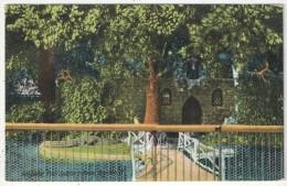 Alligator Pool, Soldier's Home, Dayton, Ohio - Dayton