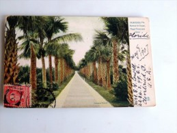 Carte Postale Ancienne : Palm Beach , Avenue To Ocean , Royal Poinciana Hotel, Stamp 1907 - Palm Beach