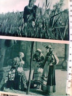 SERIE 5 CARD FILM LA MADONNA DI CARAVAGGIO SCENE 1 TEMPO STORIA CINEMATOGRAFICA ED  FIDES   1932 Perfette    ES15531 - Cinema