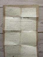 Nationale Militie Arrondissement Eekloo Vrijstelling Bijzondere Lichting 1919 - Documenti