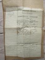 Uittreksel Kat Geboorte Akte 1919 Adegem Oost Vlaanderen - Birth & Baptism