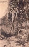 Forge-Roussel Le Tamijean Et Le Pont Rustique - Florenville