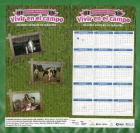 24 URUGUAY 2015 CALENDARIOS- Concurso Fotográfico-Mujeres Rurales En ElCampo - Calendriers