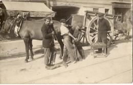 PONT DE LA MAYE - Ferrage D'une Mule - TOP CARTE - France