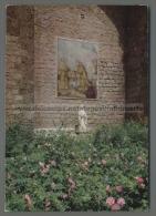 U148 SUBIACO Roma SACRO SPECO DI S. BENEDETTO IL ROSETO (tur) - Italia