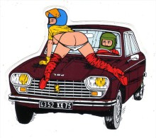 AUTOCOLLANT STICKER PIN UP - PEUGEOT 204 - Stickers