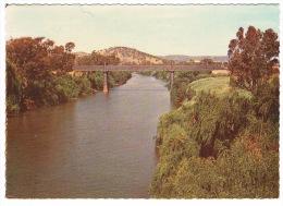 RB 1024 -  Australia New South Wales Postcard -  Macquarie River & Bridge Wellington - Australie