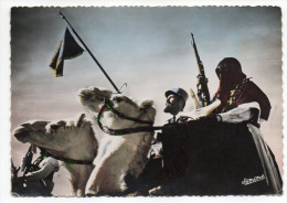 Alg�rie--OUARGLA--M�haristes, Police des Confins du Sud (chameaux)cpsm 15 x 10 n�9 �d Jomone--cachet militaire au dos--