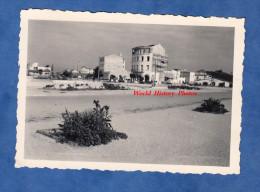 Photo Ancienne - CANET PLAGE ( Pyrénées Orientales ) - Immeubles En Construction - Septembre 1952 - Lieux