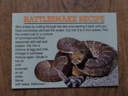 42549 PC:  RECIPES: USA:  RATTLESNAKE RECIPE. - Recipes (cooking)