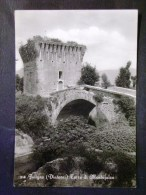 UMBRIA -PERUGIA -FOLIGNO -F.G. LOTTO N° 446 - Perugia