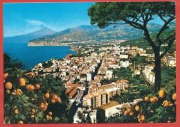 CARTOLINA VG ITALIA - SORRENTO (NA) - Panorama - 10 X 15 - ANNULLO 1981 - Other Cities